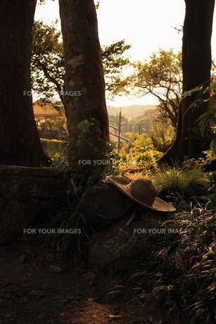 夕日の中の麦わら帽子の写真素材 [FYI00213720]