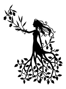 木の精霊の写真素材 [FYI00213891]