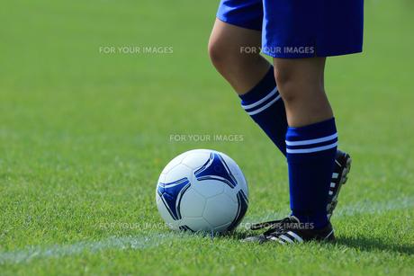 サッカーの写真素材 [FYI00213969]