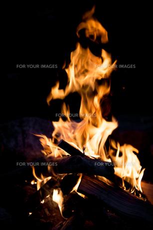 焚き火の写真素材 [FYI00214065]