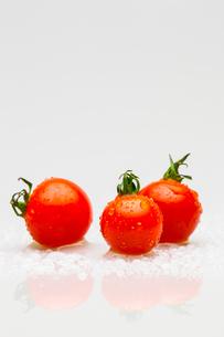 トマトの写真素材 [FYI00214123]