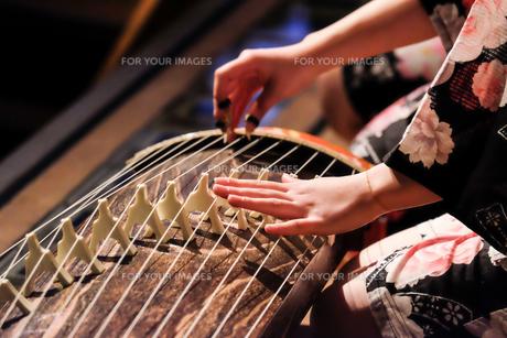 琴を弾く手の写真素材 [FYI00214357]