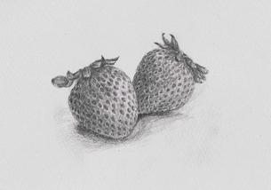 苺の写真素材 [FYI00214467]