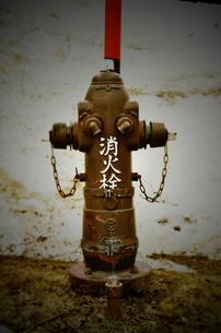 消火栓の写真素材 [FYI00214613]