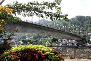 鮮やかな花々と川を横切るインドネシアの橋の写真素材 [FYI00214937]