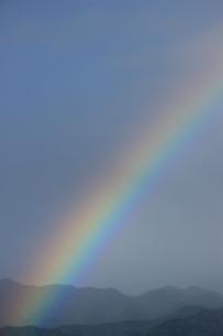 雨かける光の写真素材 [FYI00215238]