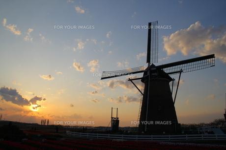夕焼けの風車の写真素材 [FYI00215698]