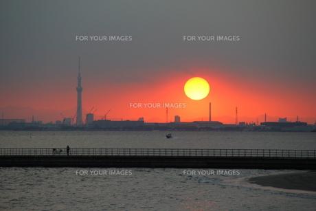 夕景の海とスカイツリーの写真素材 [FYI00215713]
