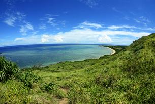 南の島の海と緑の写真素材 [FYI00215772]