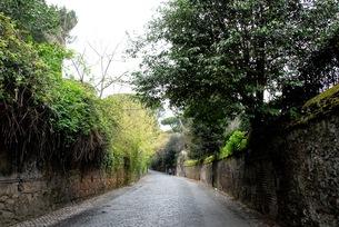 イタリア アッピア街道の写真素材 [FYI00215779]
