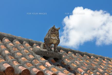 シーサーのある屋根の写真素材 [FYI00215791]