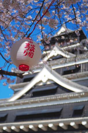 お花見シーズンの熊本城の写真素材 [FYI00215942]