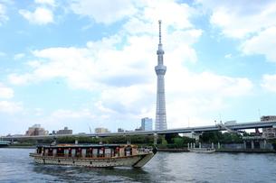 隅田川公園からの眺めの写真素材 [FYI00215998]
