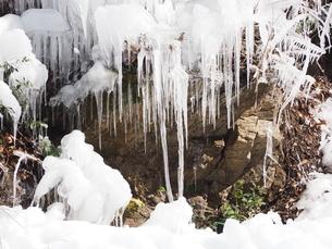 氷柱の写真素材 [FYI00216038]