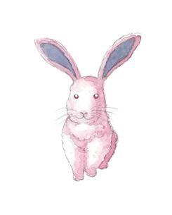 ピンク色のウサギの写真素材 [FYI00216133]
