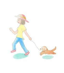 犬の散歩をする女性の写真素材 [FYI00216141]
