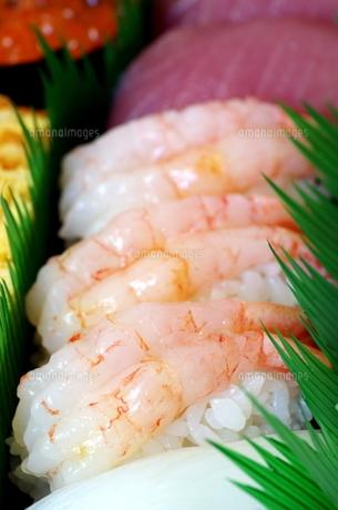 寿司の写真素材 [FYI00216292]