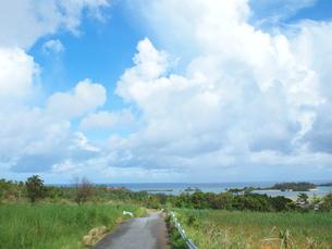 沖縄本島の空と道の素材 [FYI00216843]