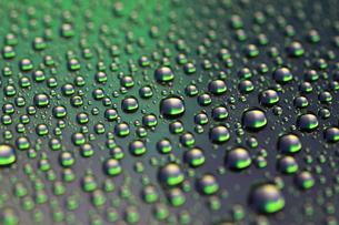 緑の水滴の写真素材 [FYI00217560]