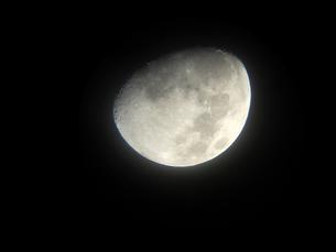 上弦の月の写真素材 [FYI00217635]