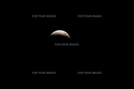 皆既月食の写真素材 [FYI00218029]