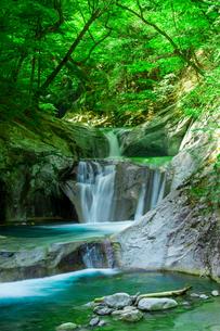 七ツ釜五段の滝の写真素材 [FYI00218098]
