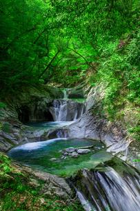 七ツ釜五段の滝の写真素材 [FYI00218110]
