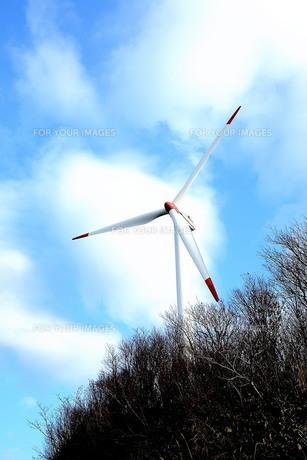 風車の写真素材 [FYI00218119]