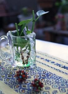 ガラスの器とアジサイの枝葉の写真素材 [FYI00218159]