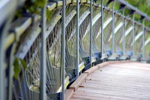 橋の欄干の写真素材 [FYI00218245]