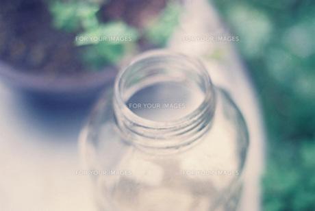 庭に置かれた瓶の写真素材 [FYI00218341]