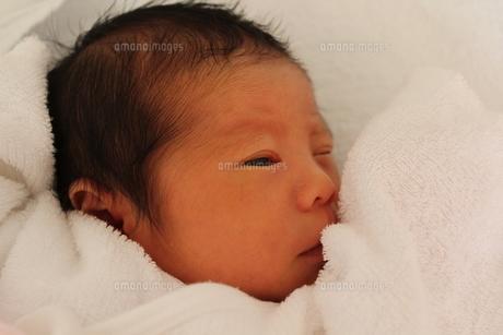 赤ちゃんの写真素材 [FYI00218382]