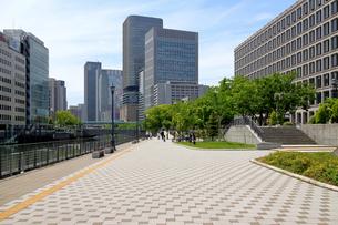 大阪 中之島公園の写真素材 [FYI00218602]
