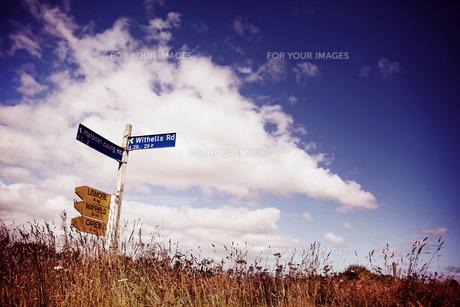 道路標識の写真素材 [FYI00219319]