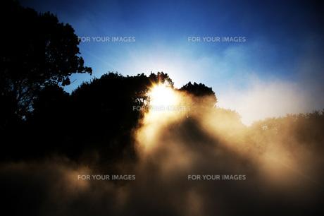 霧の素材 [FYI00219337]