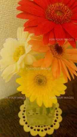 たくさんの花の素材 [FYI00219454]