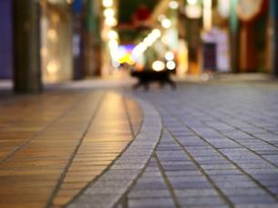 商店街の猫の写真素材 [FYI00219696]