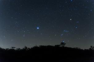 オリオン座とオオイヌ座の写真素材 [FYI00219889]