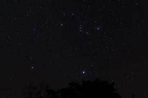 オリオン座の写真素材 [FYI00219917]