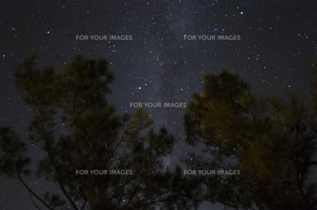 星空の写真素材 [FYI00219952]