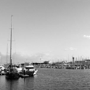 ヨットハーバー:横浜ベイサイドマリーナの写真素材 [FYI00220317]
