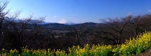 富士山:Mt.Fujiの写真素材 [FYI00220380]
