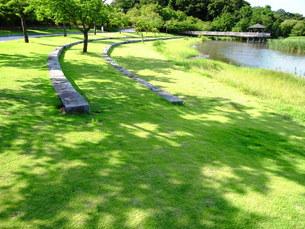 夏の公園風景の写真素材 [FYI00220676]