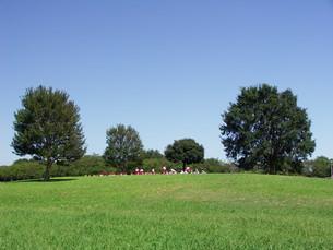 草原へのピクニックの写真素材 [FYI00221092]