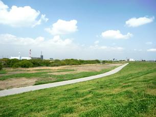 春の江戸川風景の写真素材 [FYI00221179]