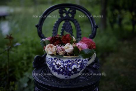 軽井沢レイクガーデン 薔薇と椅子の写真素材 [FYI00221465]