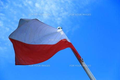 ポーランド国旗の写真素材 [FYI00221568]
