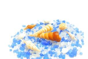 ガラス玉と貝殻の写真素材 [FYI00221652]