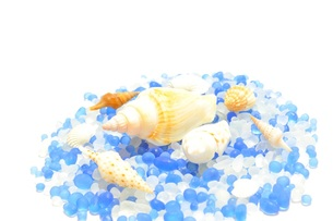 ガラス玉と貝殻の写真素材 [FYI00221656]