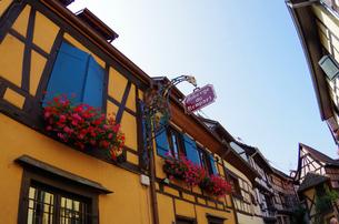 エギスハイム Eguisheimの写真素材 [FYI00221824]